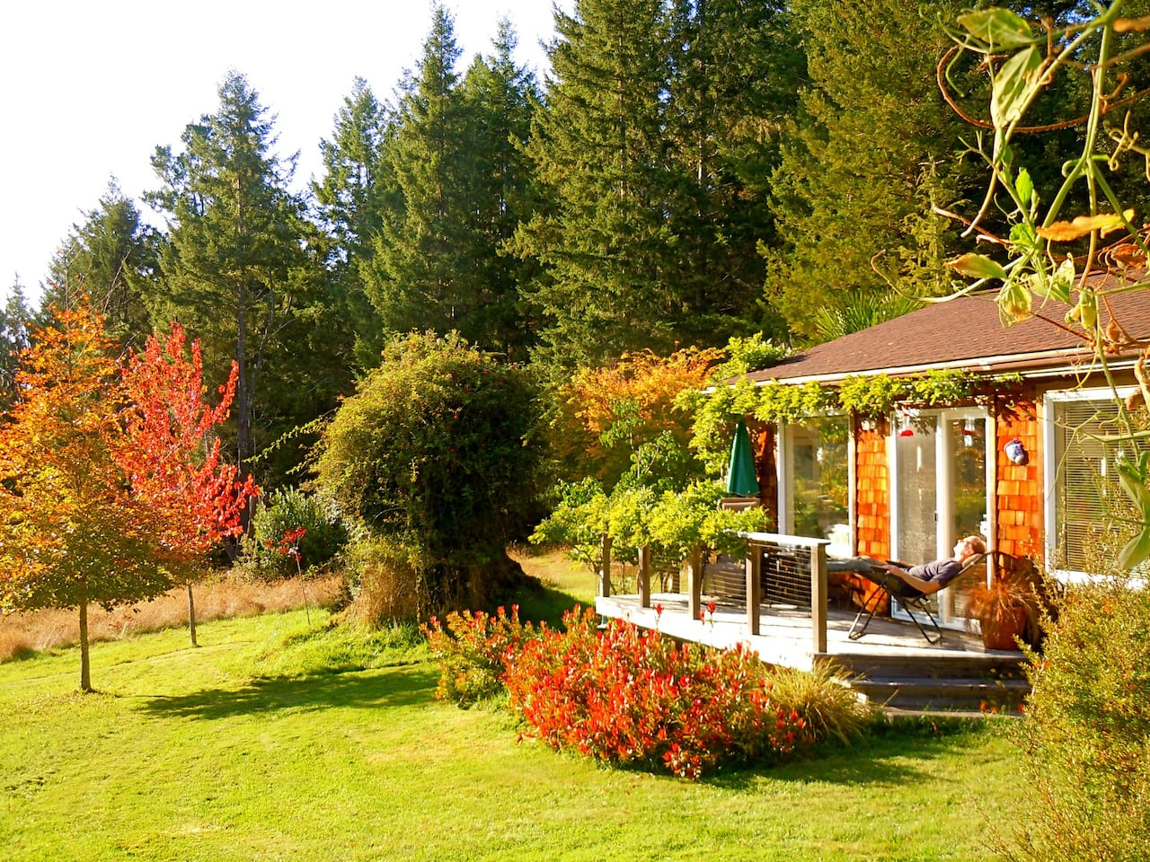 a guest reclining on the cottage's sunny deck, relaxing in nature...