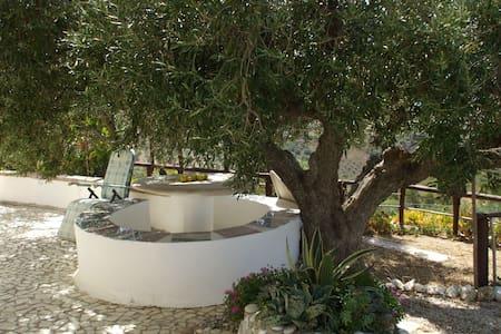 Bellavista - Sicilian Garden Villa - Apartment