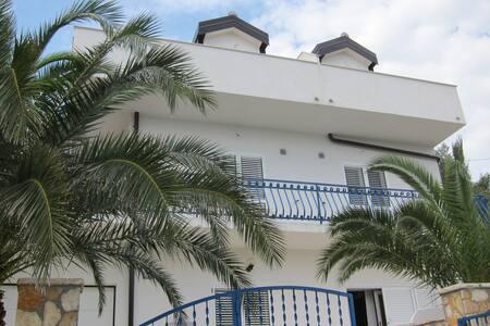 Apartmani 2 Palme, Ado, sea view - Appartamento
