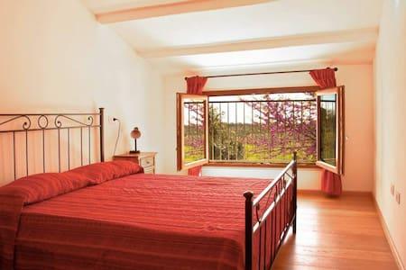 Appartamento in Az. BIO  a Bibbona - Bibbona - Apartment
