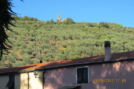 Lovely House among Olive Groves - Apartment
