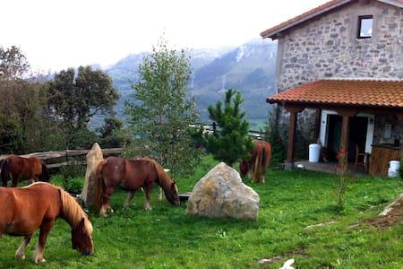 Bonita Casa Rural en Cantabria - Kantabrien - Hus