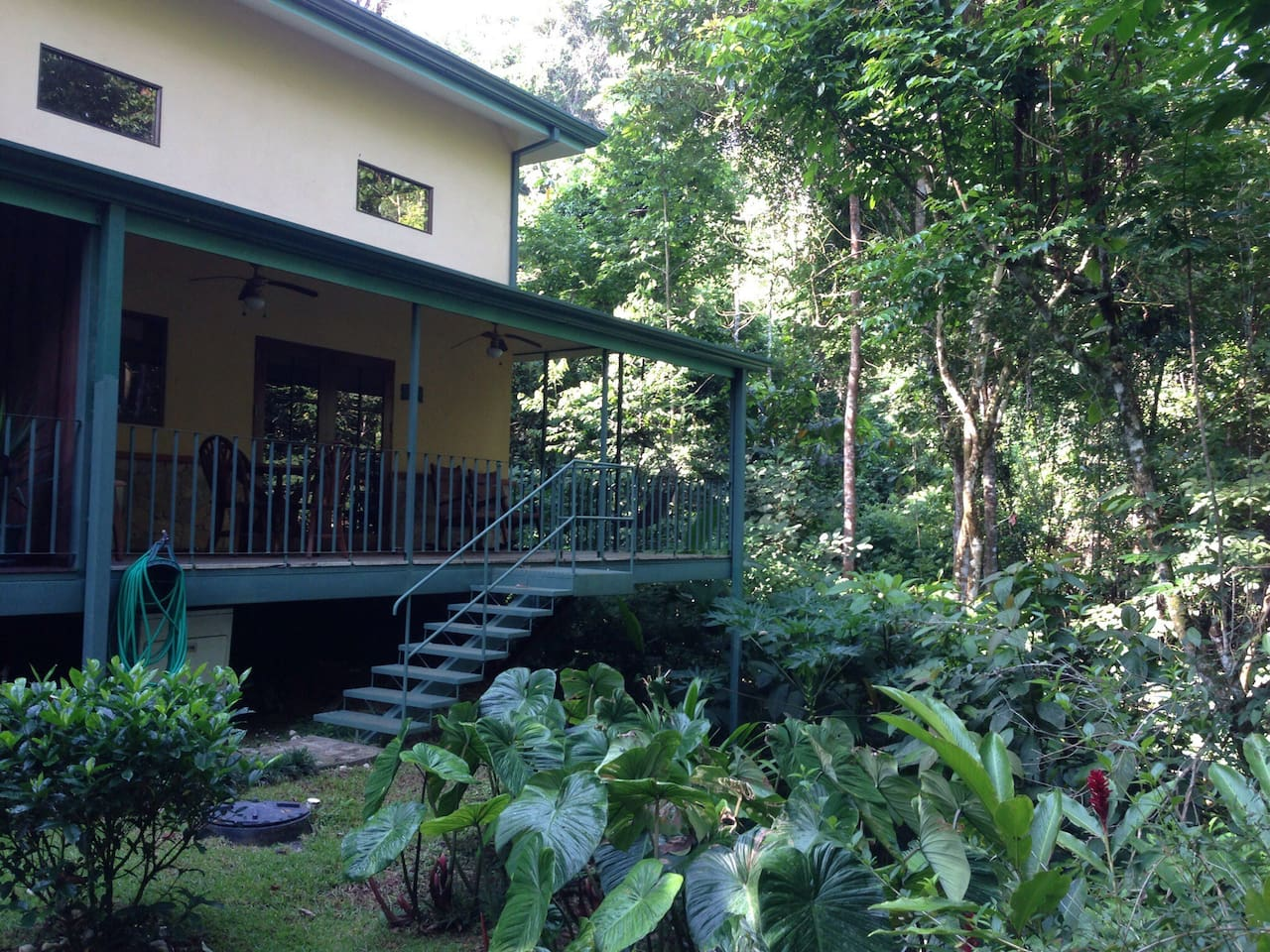 Back yard of villa Rosalie . You are in the rainforest of costa