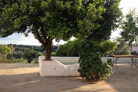 Casa da Fonte Velha - Tomar - Huis