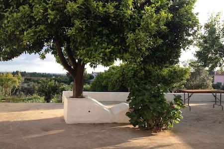 Casa da Fonte Velha - Casa