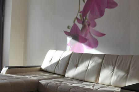 Современные и яркие апартаменты в Пушкине - Leilighet