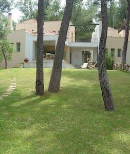 Villa Sofia in Sani forest - Sane