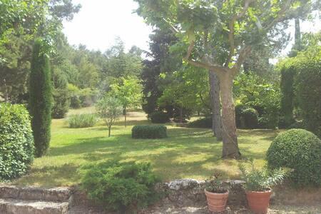 Ancien mas dans le parc du Luberon - House