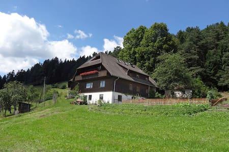 Ferien auf dem sonnigen Berg - House