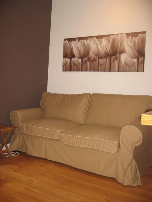 Confortable sofa bed for 2