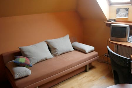 Great room 15 min from Lodz center - House