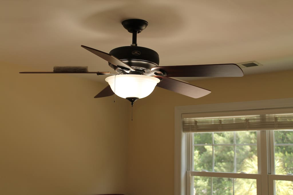 Dorm Room ceiling fan and light fixture.