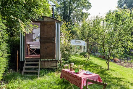 Shepherds hut in a beautiful garden - Pentridge, Salisbury - Cabana
