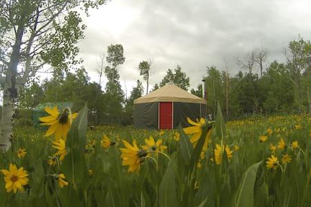 Mountain solitude, luxury of a yurt - Montpelier - Iurta