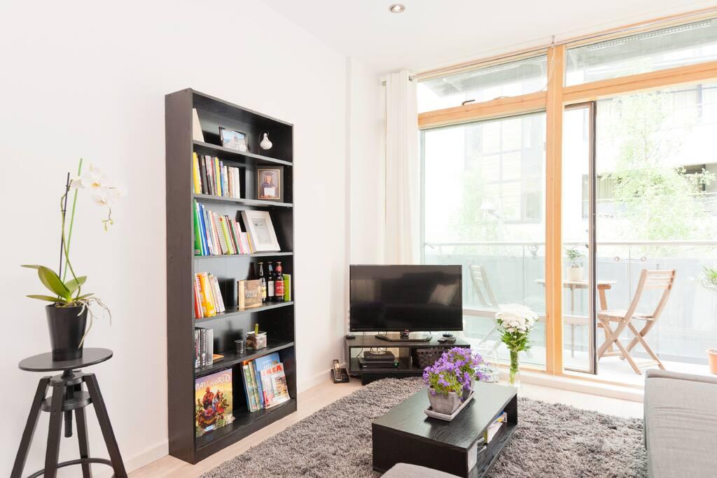 Bookshelf and 40' inch TV Full HD