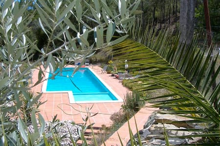 B&B in the hart of Portugal - K1 - Bed & Breakfast