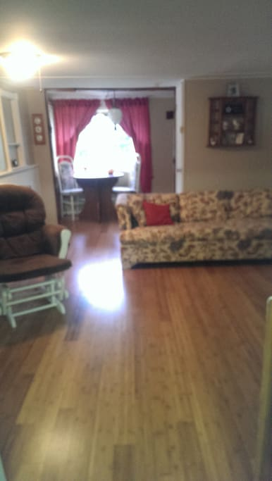 Living area with pull out couch