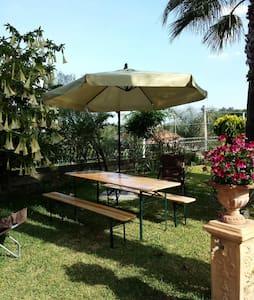 Etna Sweet Home loft con giardino  - Santa Venerina - Loft