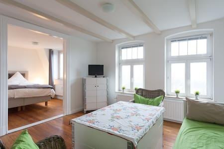 Bird's-nest over Flensburg - Flensburg - Appartement