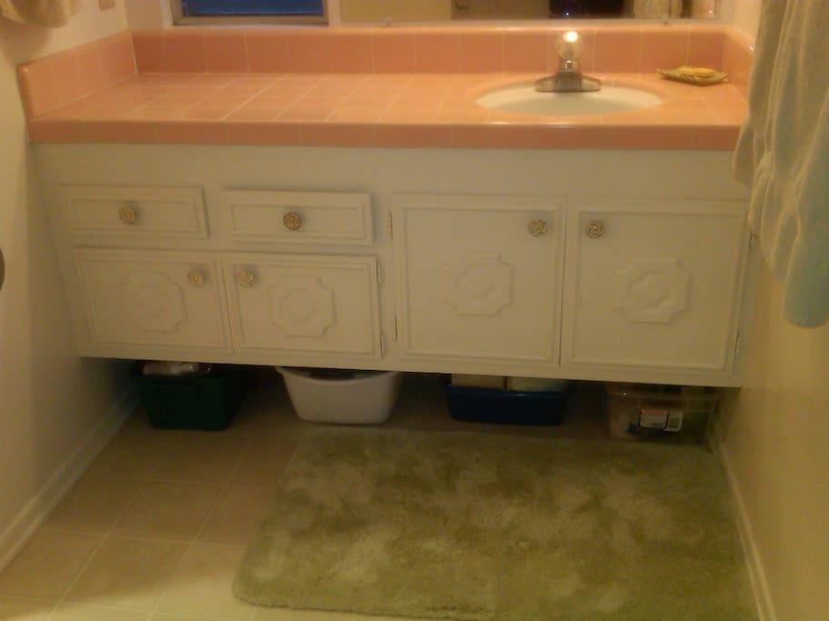 Ensutie washroom for exclusive private room.