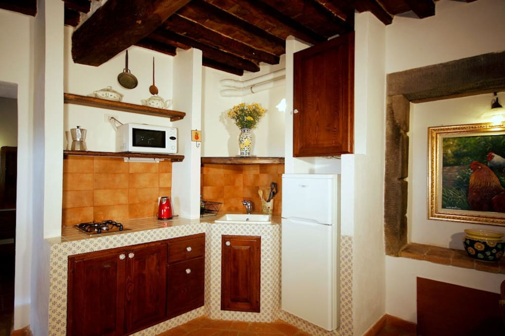 La Mucchia villa in Tuscany - the kitchen Tuscan authentic style