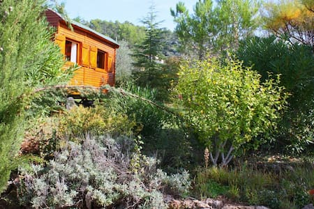 Roulotte dans un grand jardin calme, - Carnoules - Earth House