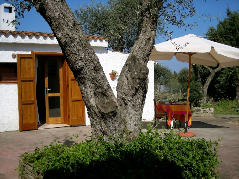 SMALL HOUSE INDEPENDENT IN SARDEGNA