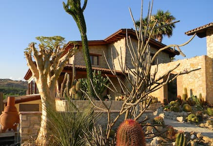 Relais Garden Cactus B&B - Orchidea - Favara