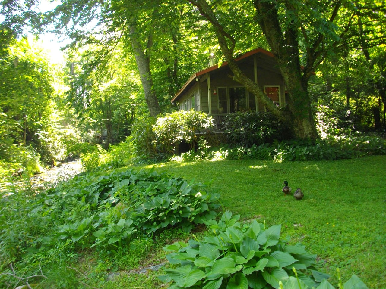 Summer view with creek on side, ducks and porch with rocking chairs