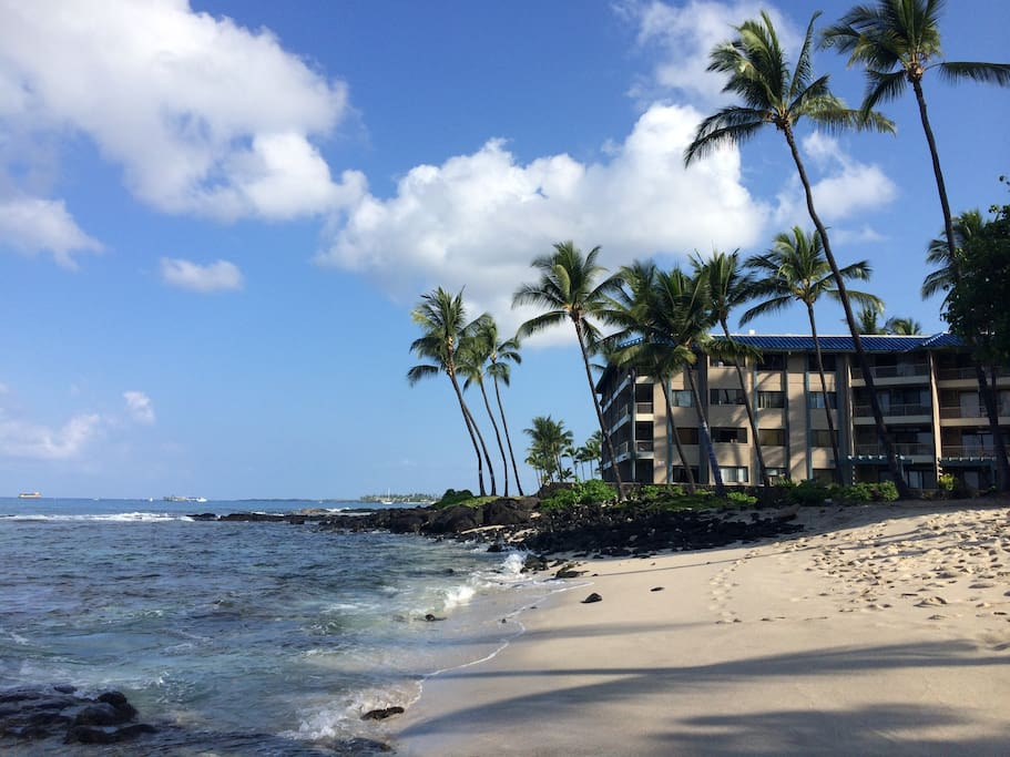 Oceanfront Kona Reef building! Beautiful private beach!