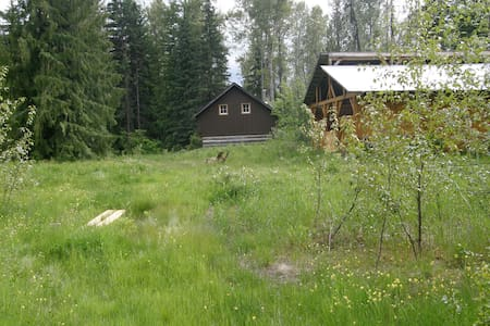 Ptarmigan Hills Wilderness Cabin - Bed & Breakfast