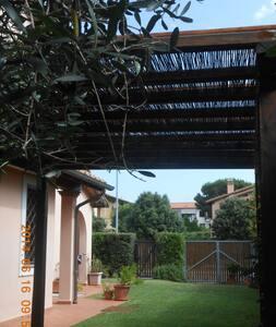 Hibiscus - Borgo Carige