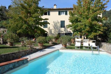 Lucca ed i suoi oliveti - House