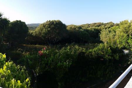 Casa Vacanze con Giardino immersa nel verde - Santa Teresa di gallura
