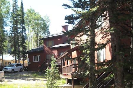 Eagle Point Resort, Snowflake #8 - Řadový dům