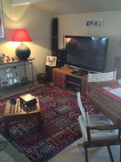 Télévision panoramique, home sound cinéma, internet wifi....