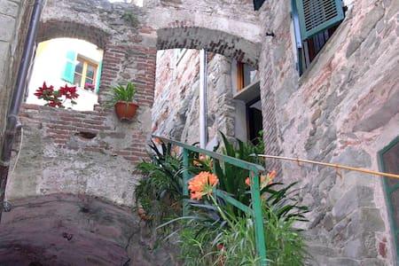Wide studio flat for 2/3 people - Corniglia - House