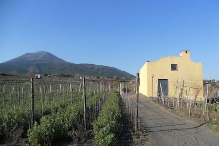 Sorrentinovini VesuvioCountry House - Casa