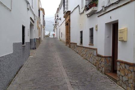 Casa rústica en casco antiguo - Medina-Sidonia - House
