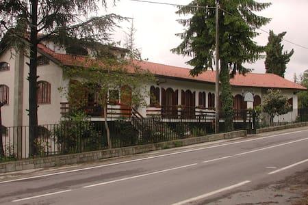 Villa nelle Colline del Monferrato  - Villa