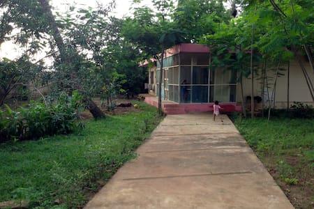 Maison et jardin centre-ville - Porto Novo - Casa