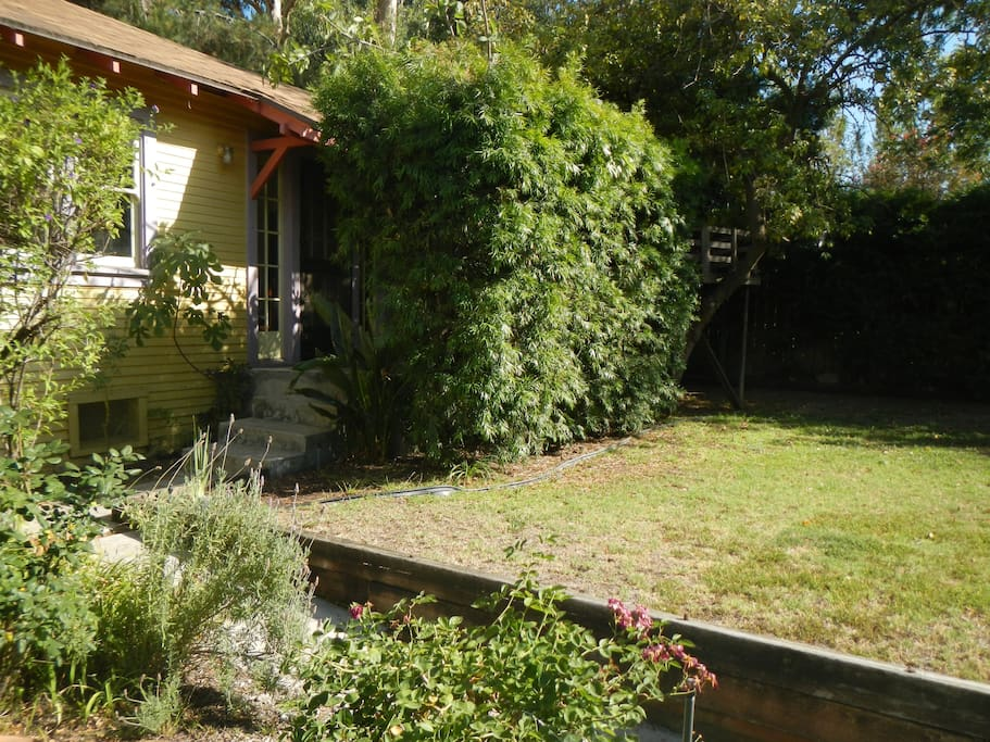 Cottage and shared yard, from rose garden