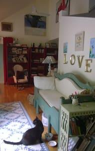 Modest cozy place