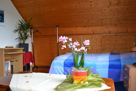 Nice private room close to Basel! - Hus