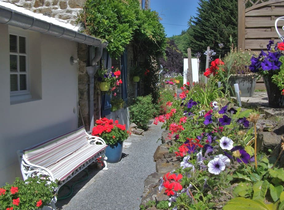 The garden at the back of the house.