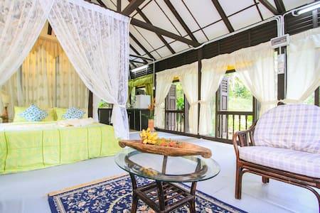 Villa Sri Kampung - Villa