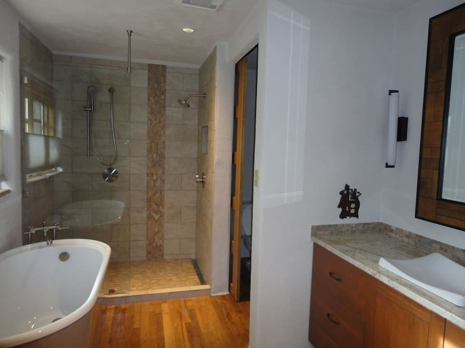 Master bathroom with soaking tub and large walk in shower