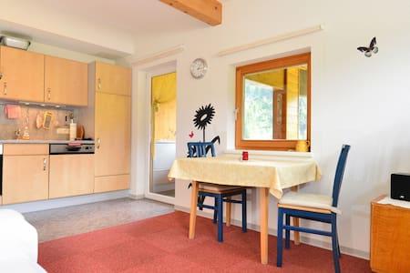 "Apartment  ""amos""   im haus mitti - Heinfels - Apartment"