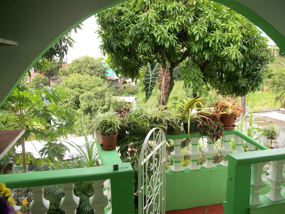 With a view into the garden and the Caribbean sea beyond it!