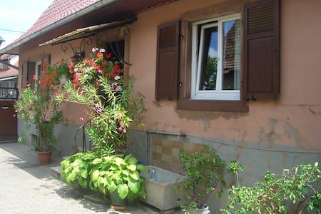 Maison pour vac ou séjour en Alsace - Dům